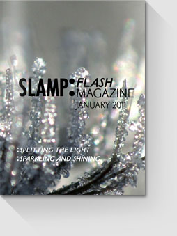 thumb-flash-january-2011_catalogues